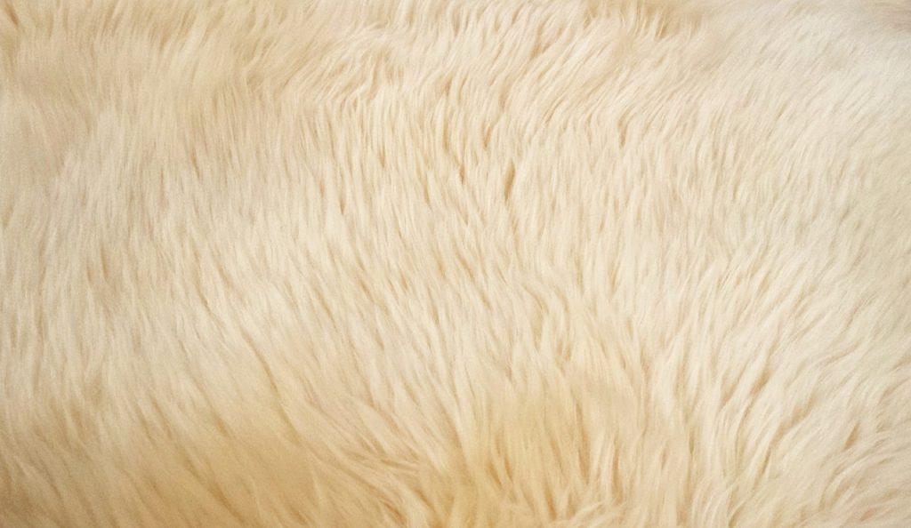 goat-hair-carpet